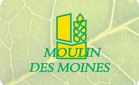 Bouton Moulin des Moines